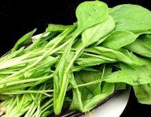 绿叶菜宜新鲜吃不适合做汤―厦门烹饪学校分享