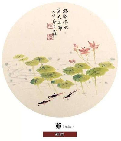 诗经木瓜古筝谱